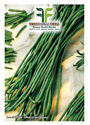 180 aprox – Green Klettern Bohnensamen Mangiatutto Metro Rosa Samen – Dolichos sesquipedalis In Originalverpackung Made in Italy – Grüne kletternden Bohnen – rosa Samen