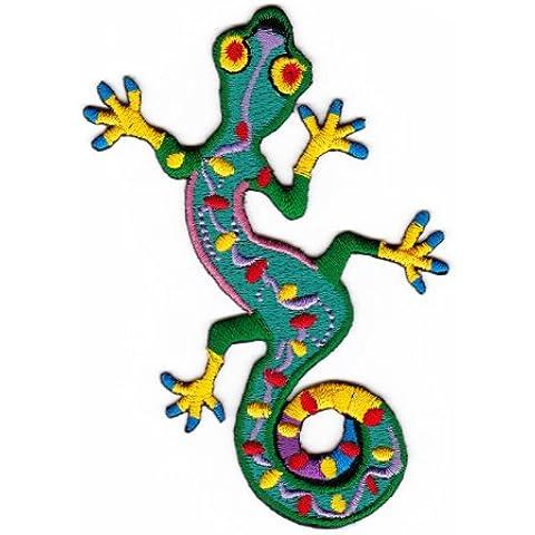 Gecko lucertola rettile lucertola Goa Asia abbigliamento