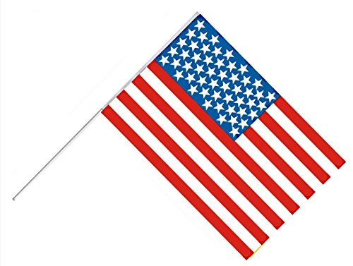 FLAG ON STICK USA VEREINIGTE STAATEN 60 x 45 cm AMBIANCE FOOT (Flag Stick State)