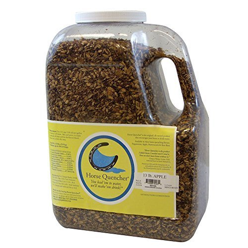 Horse Quenchers Rootbeer Jug, 13 oz. by Horse Quenchers
