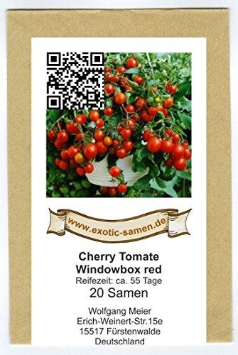 Balkontomate – Buschtomate – rote Cherry – Windowbox red – 20 Samen