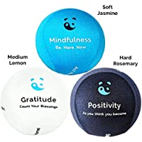 3x Mind & Body Stress Ball - AROMATHERAPY & POSITIVE QUOTES! Free mindfulness E-Book & hand Physio exercises Included.The perfect anti-stress relief toys for adults & kids