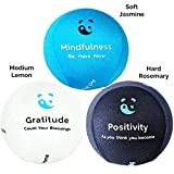 3x Mind & Body Stress Ball - AROMATHERAPY & POSITIVE QUOTES! Free mindfulness E-Book & colouring book. Hand therapy exercises Included.The perfect anti-stress relief toys for adults & kids