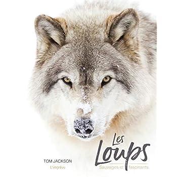 Les loups : Sauvages et fascinants