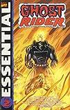 Essential Ghost Rider Volume 2 TPB: v. 2 by Gil Kane (Artist), Sam Grainger (Artist), Don Heck (Artist), (14-Feb-2007) Paperback
