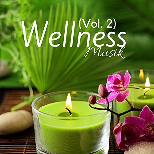 Wellness-Musik (Vol. 2) - Entspannungsmusik der Wellness, Relaxation, Meditation und Tiefenentspannung, Therapeutische Musik (Mp3-wellness-musik)