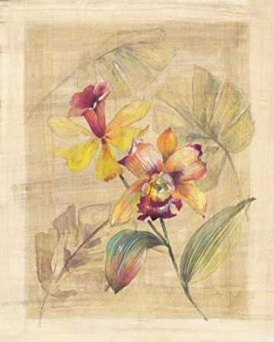 paul-hargittai-bahama-breeze-ii-fine-art-print-4572-x-6096-cm