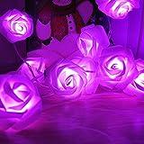 Blumen LED Lichterkette, Rusee 20 LED Rosen Lichterkette Batteriebetrieben Innen Im Freien Beleuchtung für Garten Rasen Bar Verein Hochzeit Valentinstag Weihnachten Schlafzimmer Innendekoration (Lila)