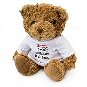 NEW - SORRY I WISH I COULD TAKE IT ALL BACK - Teddy Bear - Cute Soft Cuddly - Gift Present Apology