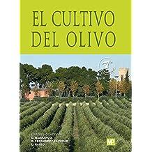 Amazon.es: el olivo