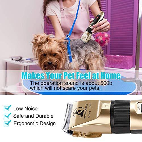 Zoom IMG-3 tosatrice cani gatti bonve pet