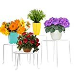 AISHN Metall 4 in 1 Topfpflanze Bodenstander Blumentopf -Rack