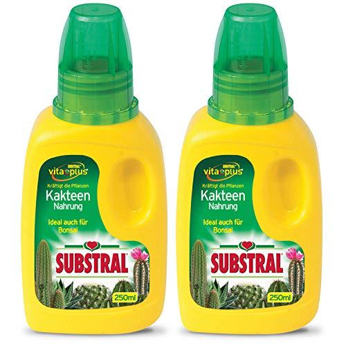Substral Kakteen-Nahrung 250ml Flasche (2 x 250 ml)