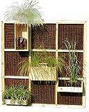 Zaun and More Sichtschutz Garten Trennwand Living Wall Nature aus Weide und Holz modulares System