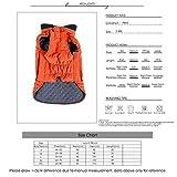 Nosii Winter Dick Baumwolle Gepolsterte Haustier Mantel Jacke Vintage Style Mantel Licht Reflexion Sicherheitsweste - Kann Mit Hundegeschirr Leine Brustgurt (Color : Blau, Size : S)