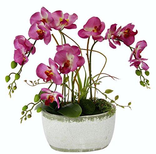 S Phalaenopsis in Schale, Polyester, Kunststoff, Keramik, Rosa, 16 x 45 x 57 cm ()