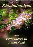 Rhododendren in der Parklandschaft Ammerland / Planer (Wandkalender 2019 DIN A3 hoch): Peter Roder mit einzigartigen Aufnahmen aus Deutschlands ... (Planer, 14 Seiten ) (CALVENDO Natur)