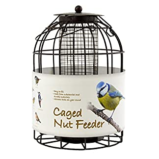 Green Jem BF6-NEW2 Dome Shaped Caged Seed Wild Bird Feeder, Brown Hammer Tone, 15.5x15.5x23 cm 13