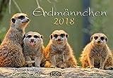 Erdmännchen 2018: Der Sympathische Erdmännchen-Kalender mit den charmanten Namen