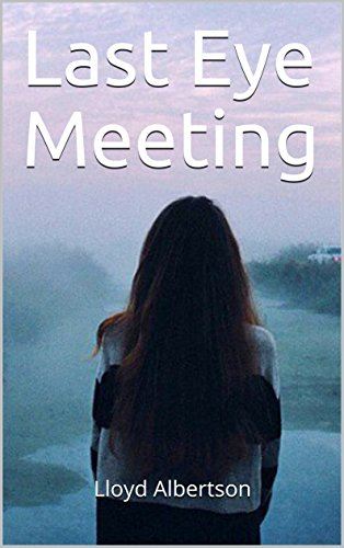 last-eye-meeting-english-edition