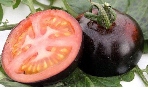 100 pcs Précipité New Plantes d'extérieur Promotion Jardin semences de tomates en pot fruits Bonsai Balcon de semences de légumes 13