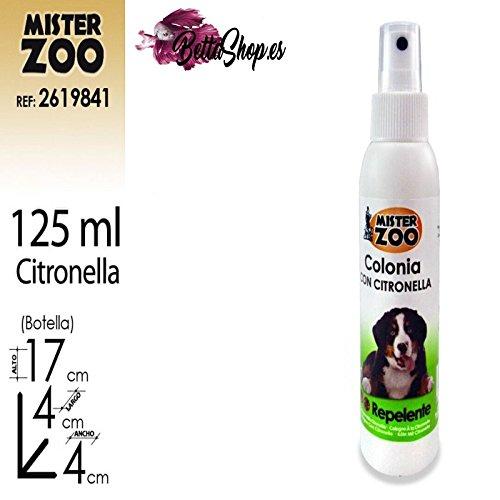 Kolonien für Hunde Köln für Hund Köln Hund Köln Hund Hygiene