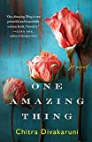 One Amazing Thing by Chitra Banerjee Divakaruni (21-Dec-2010) Paperback