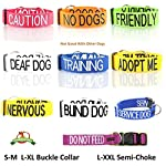NERVOUS (Give Me Space) Yellow Colour Coded 60cm 1.2m 1.8m Neoprene Padded Handle Dog Leads PREVENTS Accidents By… 11