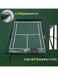 Tenis entrenamiento tenis de red, Dispositivo de formación D518