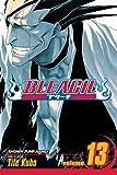Bleach Volume 13