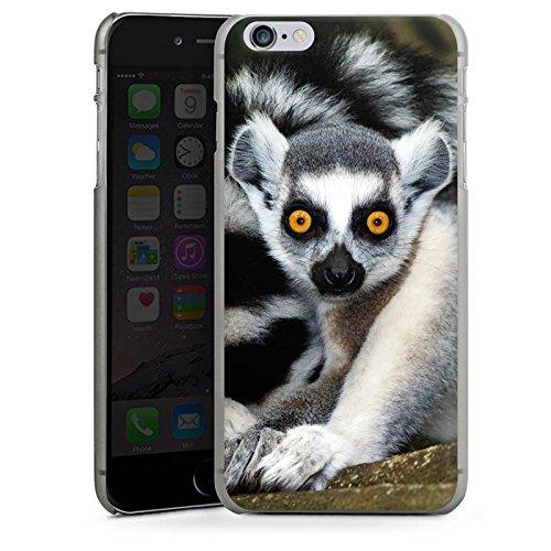 Apple iPhone X Silikon Hülle Case Schutzhülle Lemur Affe Madagaskar Hard Case anthrazit-klar
