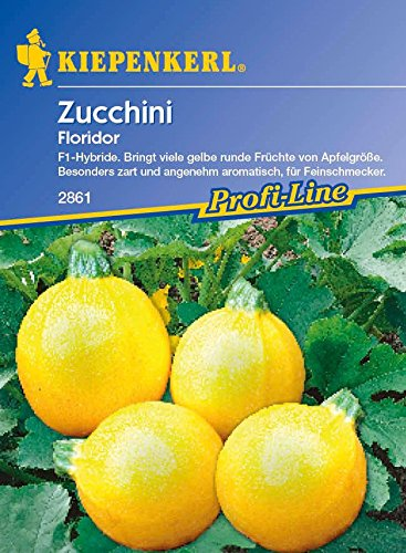 Zucchini Floridor F1
