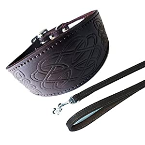 Celtic-Brown-Collar-Lead-Set-4-Sizes-Padded-and-suede-Backing-Greyhound-style-collar