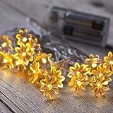 20er LED Lichterkette Sonnenblumen warmweiß batteriebetrieben