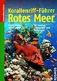 Korallenriff-Führer Rotes Meer: Ein Bestimmungsbuch für Taucher, Schnorchler und Aquarianer - Ewald Lieske