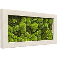 Moosbild, immergrünes Wandbild, Pflanzbild, Rahmen grau, 100 x 50 cm, EVRGREEN