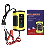 RISHIL WORLD 12V 5A Pulse Repair Charger with LCD Display Battery Charger Lead Acid AGM Gel Wet Battery Charger