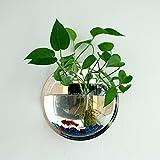 Aquarium Goldfischglas Anhänger Pflanztopf Ornament Wand Dekoration innen Restaurants 23cm von Open Buy