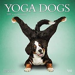 Yoga Dogs - Joga-Hunde 2018 - 18-Monatskalender: Original BrownTrout-Kalender