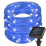 LE Cavo luminoso 10m 100LED Impermeabile, Pannello Solare 1.2V Colore Blu - Lighting EVER - amazon.it