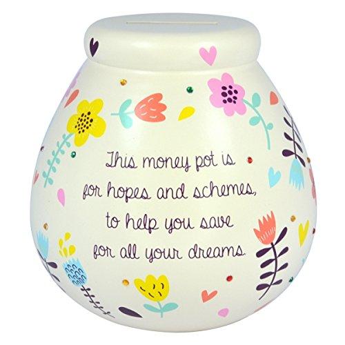 Pot-of-Dreams-Floral-Ceramic-Money-Box