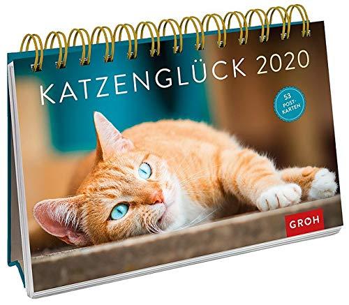 Katzenglück 2020: Postkarten-Kalender mit separatem Wochenkalendarium (Kater Kalender)