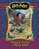 Harry Potter Literary Magical Scenes Pop Up Book