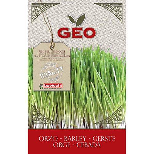 Geo ZCR0203 Keimsaaten Gerste, braun