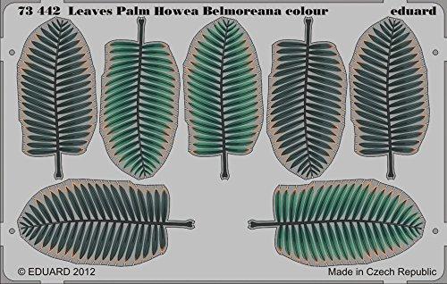 Eduard Photoetch 1:72 - Leaves Palm Howea Belmoreana colour