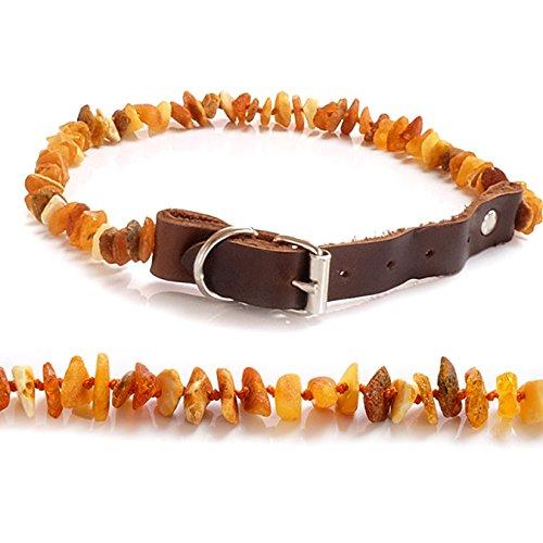 Zecken Schutz Bernstein Echter Leder Halsband für Hunde und Katzen Zeckenhalsband Roh Bernsteinkette 15-35cm Robust und Langlebig #H77 (25)