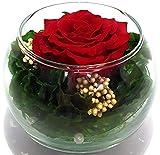 Rosen-te-amo Valentinstags-geschenk Blumen-Strauß in der Vase aus ECHTE Blumen mit eine haltbare-Rose – Das Geschenk für die Freundin