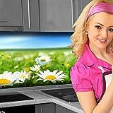 Küchenrückwand < Blumenwiese > Premium Hart-PVC 0,4 mm selbstklebend 220x60cm