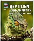 Reptilien und Amphibien. Gecko, Grasfrosch und Waran (WAS IST WAS Sachbuch, Band 20)