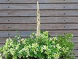 Keramik Pflanzenstecker Beetstecker Zipfel Gartendeko handmade